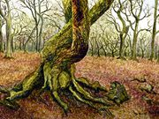 S12COMMENDED - 'Woodland Tree' by Lorraine Bessant