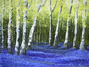 S14COMMENDED 'Blue Bell Wood' by Lorriane Bassant