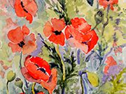 s15COMMENDED - 'Poppies' by Judith Durrant