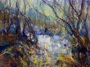 s15COMMENDED - 'Woodland Pool' by Ann Roach